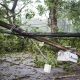 power lines down from storm damage
